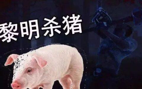 杀猪盘是什么意思?其实就是拿刀慢慢宰你这只猪